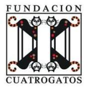 fundacion cuatrogatos
