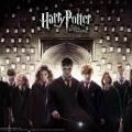 Harry y amigos3