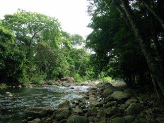 Piedra labrada río