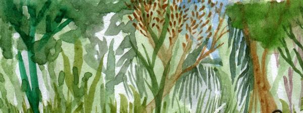 linternas-y-bosques-3er-aniversario-fragmento2