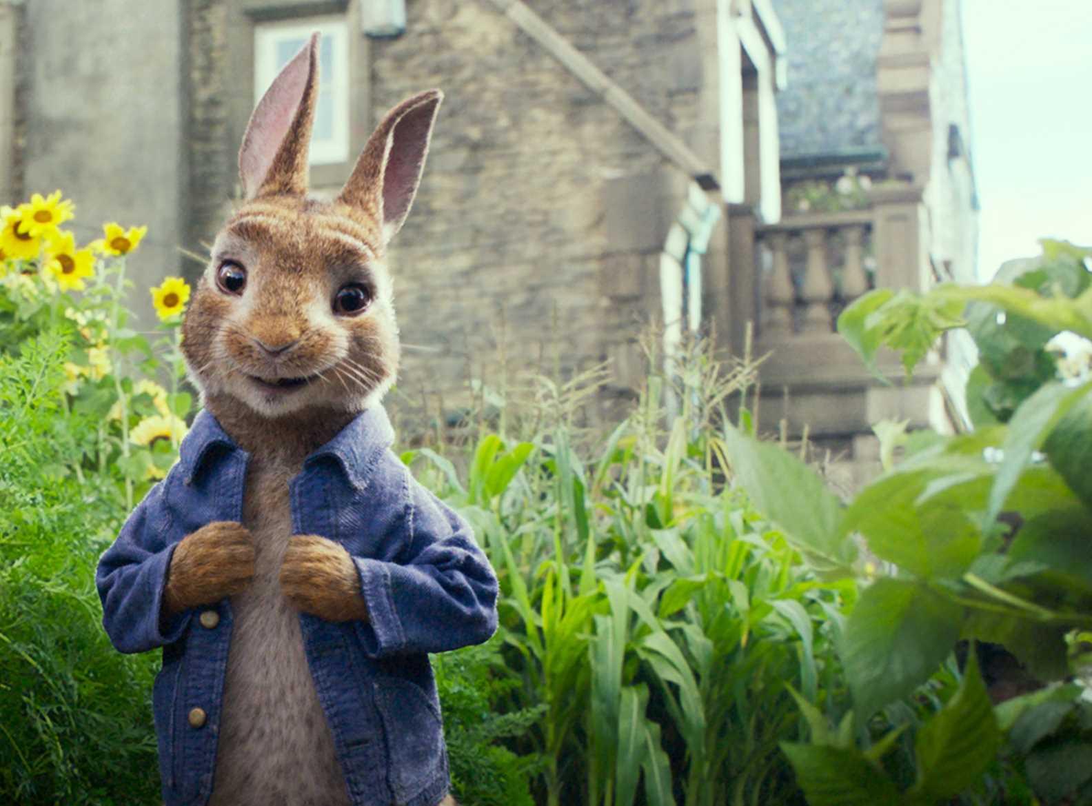 Peter Rabbit, el conejo travieso de una escritora visionaria ...