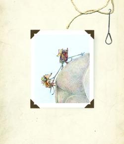 Ilustraciones de Claudia Rueda.
