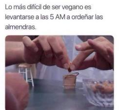 Meme vegano