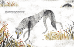 la loba y el perrito int5