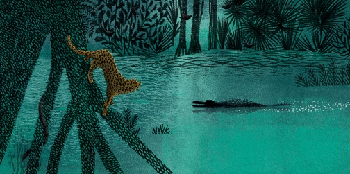ruge como jaguar-26-27