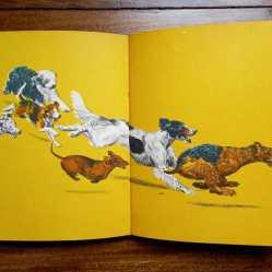 Perros gatos y caballos interiores